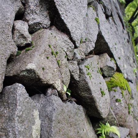 盛岡城跡公園の石垣