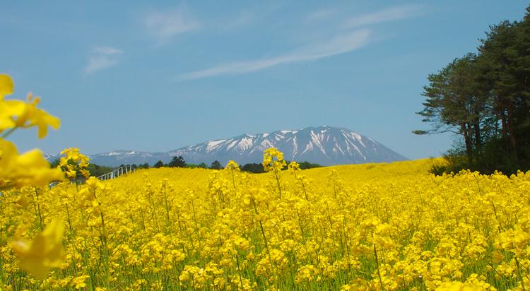 盛岡岩手山