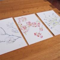 深沢紅子の美術館「野の花美術館」の絵葉書